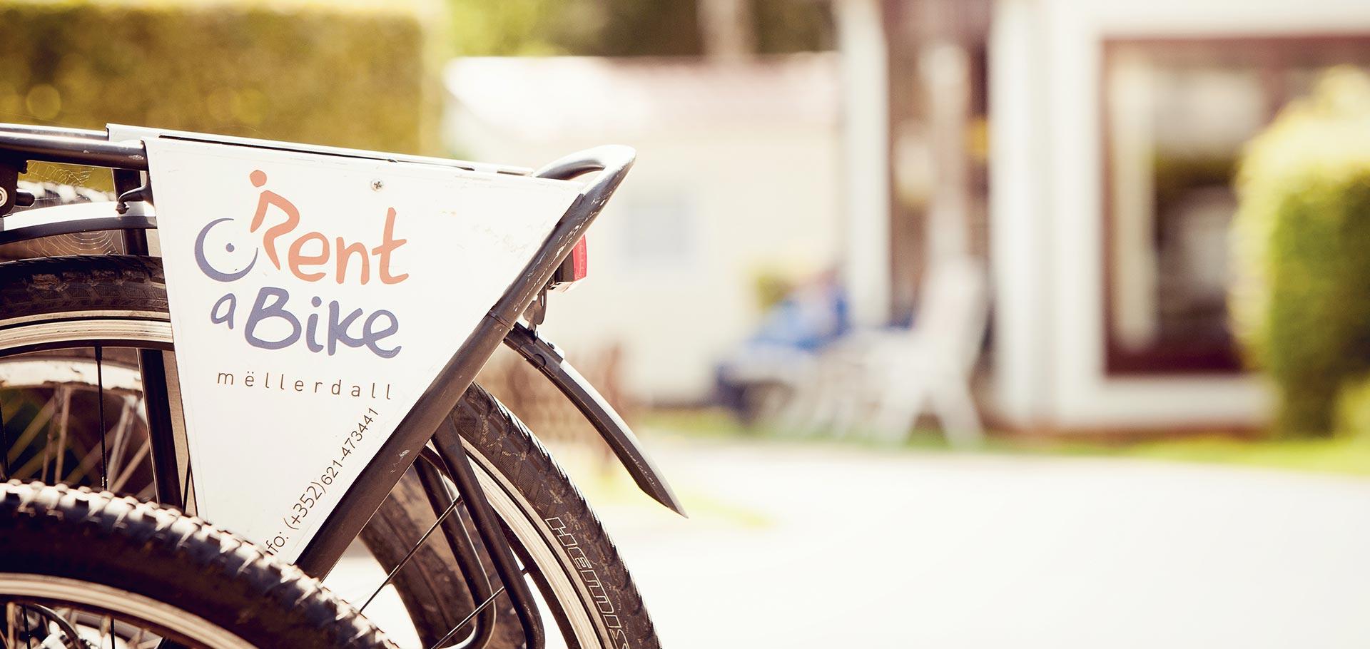 Camping_Martbusch_Berdorf_Luxemburg_Fahrrad_and_MTB_01